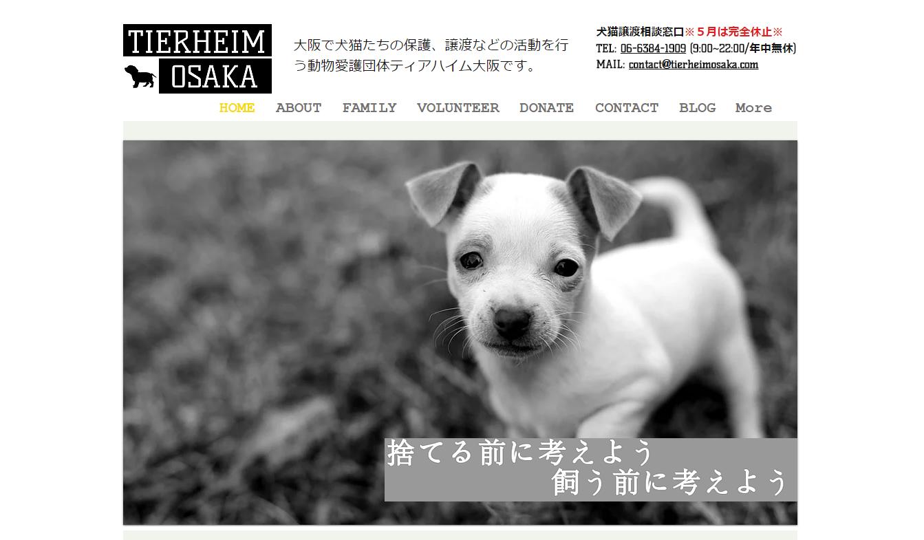 保護 犬 大阪