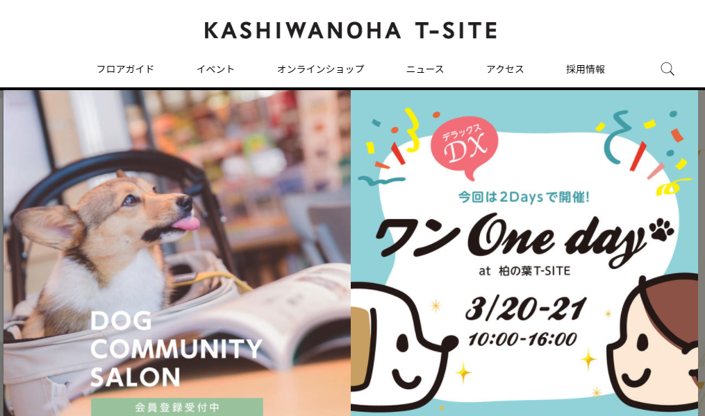 ワンOneday DX at 柏の葉T-SITE